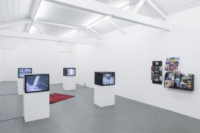 2. Step into Spring, Installation view, 2017.jpg